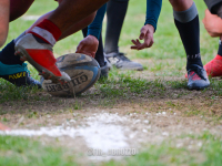 Il rugby nel weekend