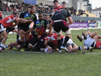 Via alle prevendite per Zebre v Dragons all'Aquila